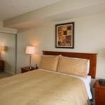One Bedroom Apartment- Bedroom 1